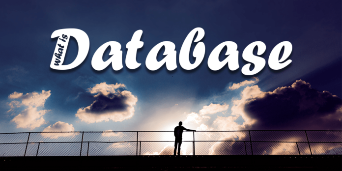 what is a database by manish sharma